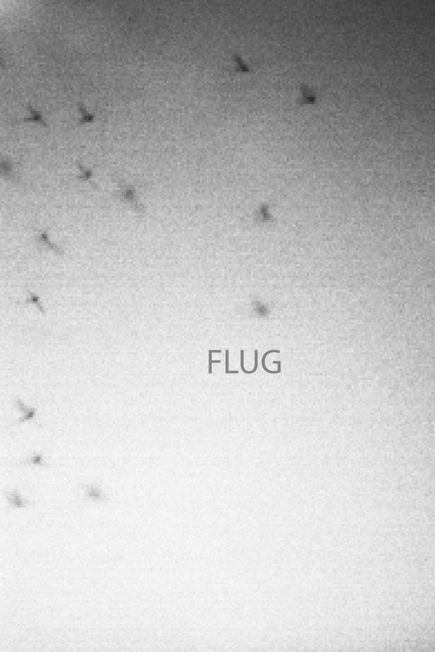 Flug_Titel